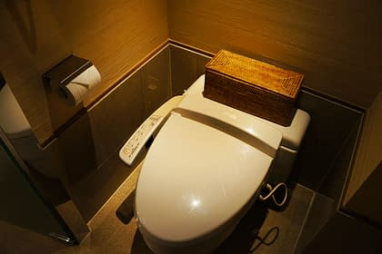 Picture of Japanese Washlet for part two of the infamous Toilet Tour by Peter Chordas