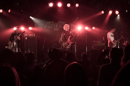 Never Again, 20th Anniversary Show