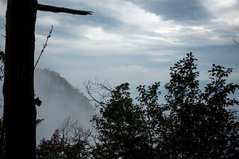 Mists of Mt. Misen, Miyajima