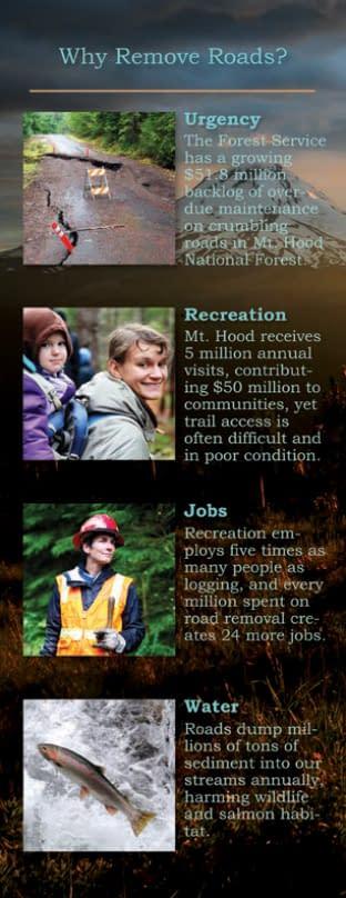 Bark Fact Sheet (back) written and designed by Peter Chordas